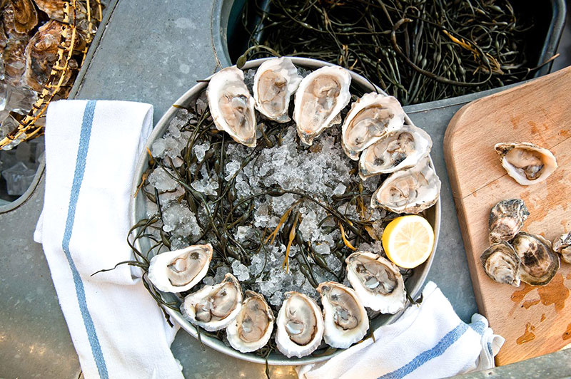 Grand Banks Oysters